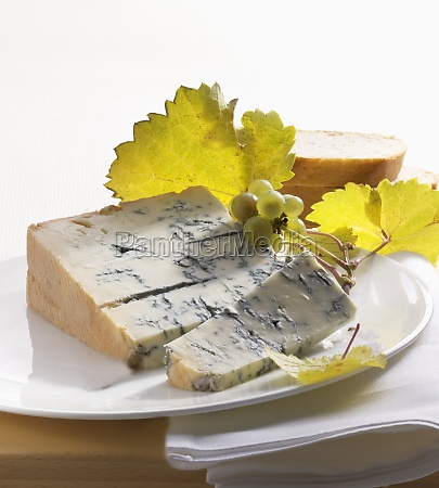 noble mushroom cheese with vine branches