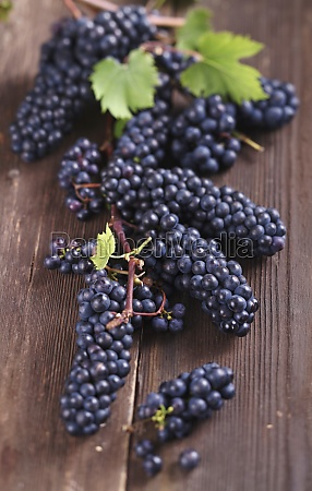 small blue grapes on a wooden