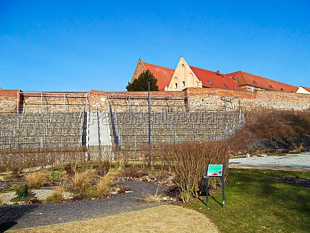 vineyards on the historic city wall