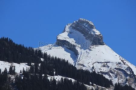 snow covered mountain zindlenspitz
