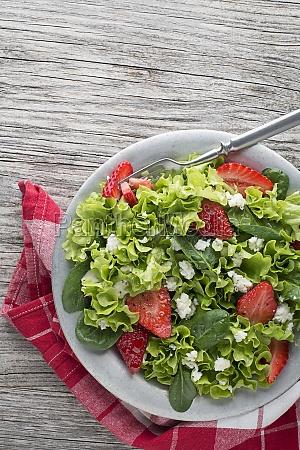 salad fruit