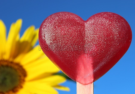 a red ice and a sunflower