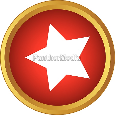 star icon in simple style