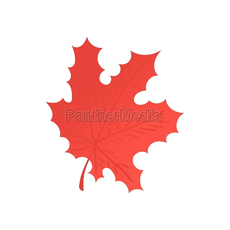 red maple leaf icon cartoon style