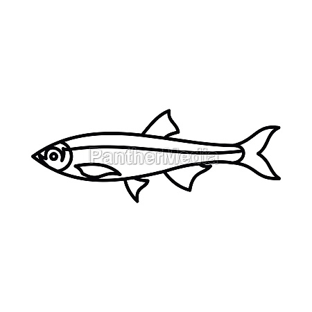 herring fish icon outline style