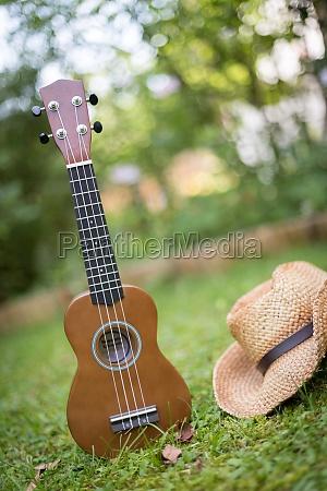 summertime ukulele lying in the grass