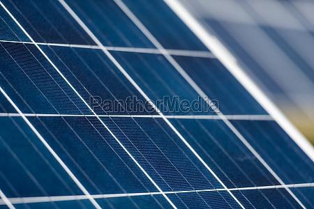 solar panels plant