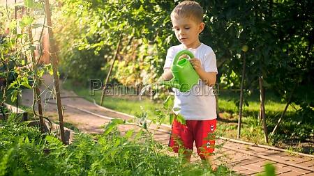 cute little toddler boy watering vegetables