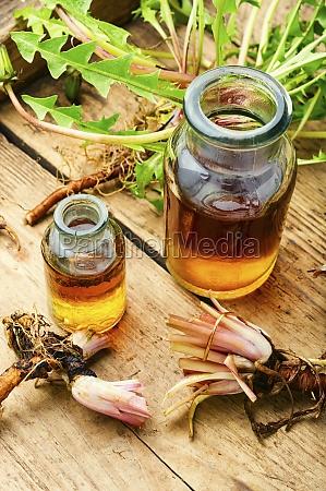 dandelion root in herbal medicine
