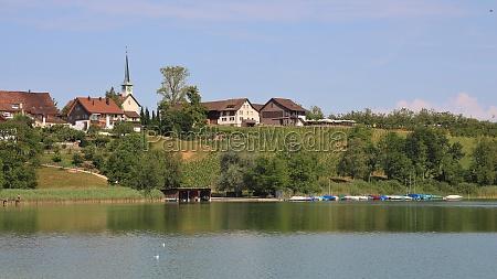 summer day at lake pfaeffikon