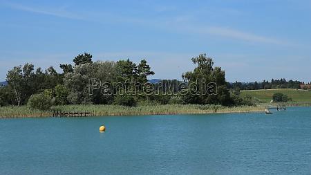 reed and jetty at lake pfaeffikon