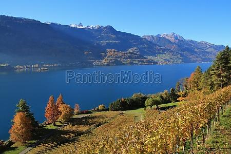 autumn landscape at lake walensee switzerland