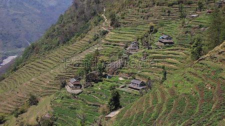 traditional architecture and terraced fields in