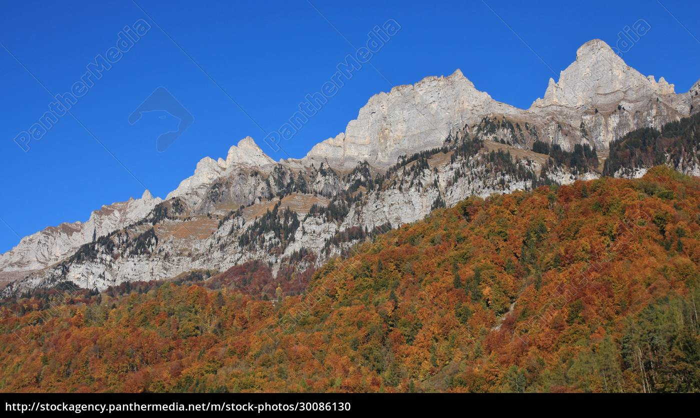 multi, colored, autumn, forest, and, mountain - 30086130