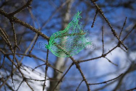small green plastic net bag caught