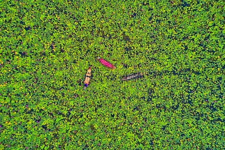 aerial view of three traditional boats