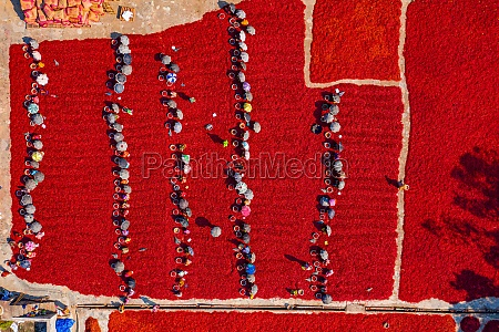 aerial view of people working in