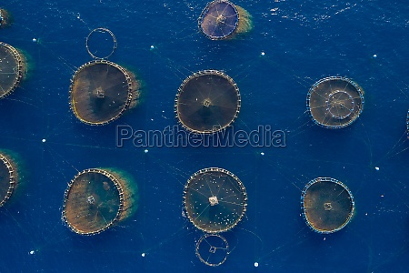 aerial view of fish farm in