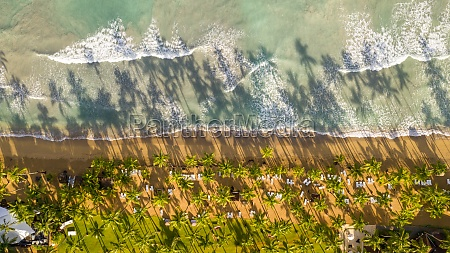 aerial view of tropical beach in