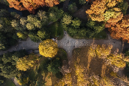aerial view of a walking path