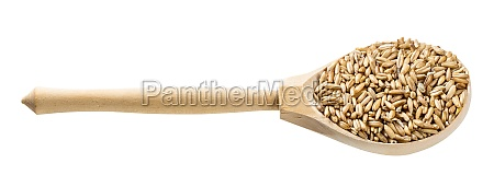 wooden spoon with unpolished oat grains