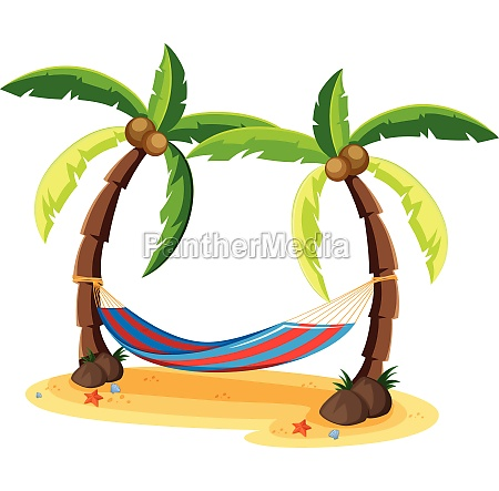 coconut tree and hammock on white