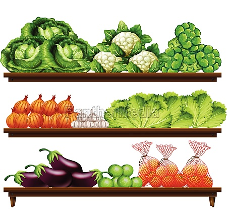 group of vegetables on shelf