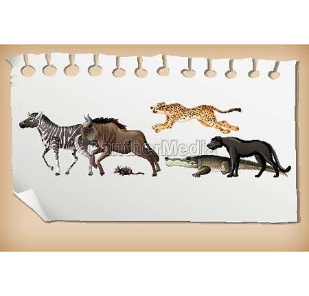 group of wild african animal on