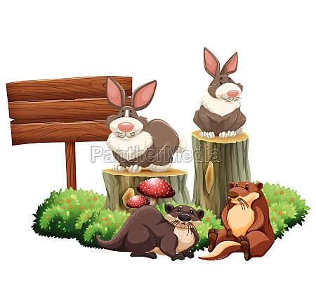 rabbits and beavers by the sign