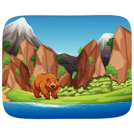 brown bear in moutain scene