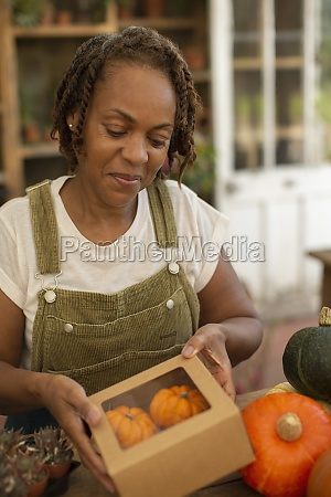 female florist boxing small pumpkins in