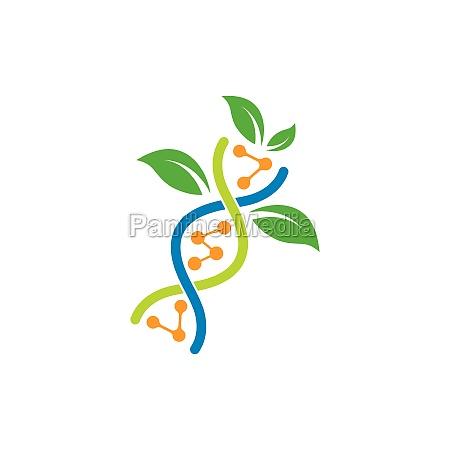 dna genetic logo icon illustration