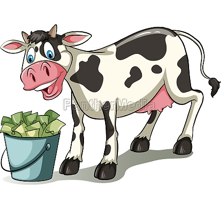 a cow watching the pail