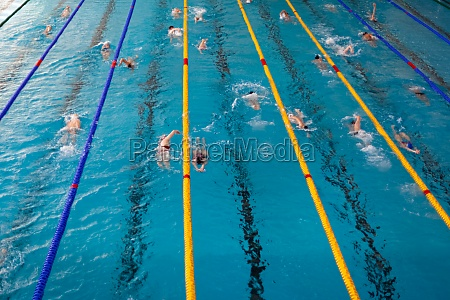 competitive swimming in the pool during