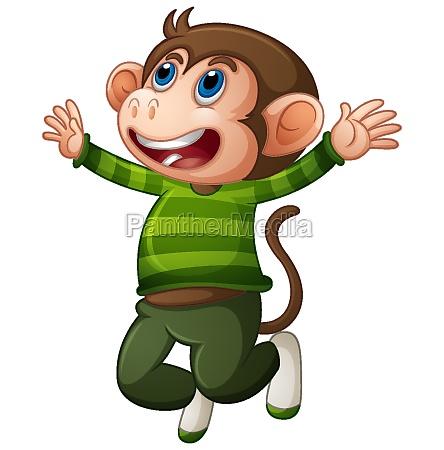 a cute monkey wearing t shirt