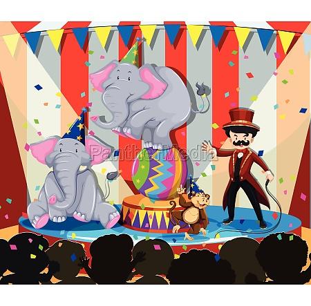 animal show at the circus