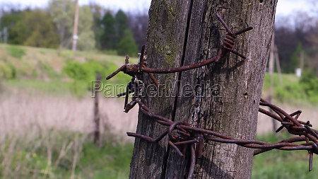 old wooden fence with rusty barbed