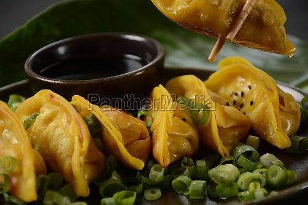 japanese dumplings gyoza with chicken and