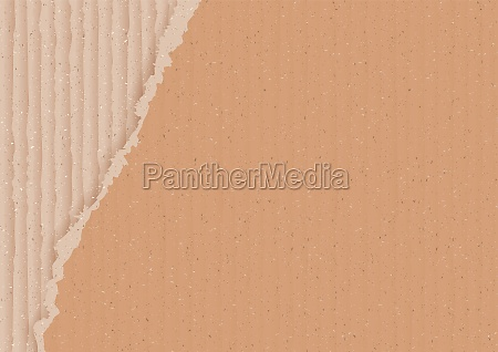 corrugated brown cardboard background with torn