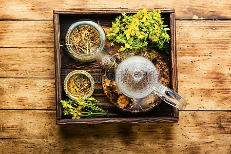 hypericum in herbal medicine alternative medicine