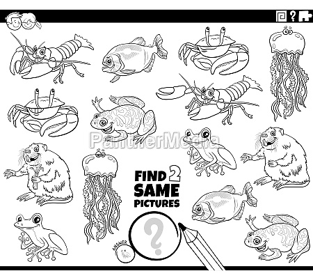 find two same animals task coloring