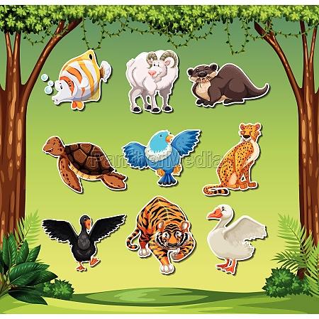 set of animal sticket