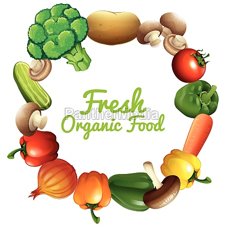 border design with fresh vegetables