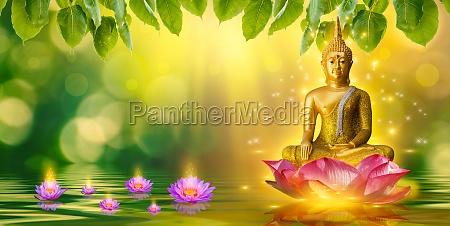 buddha statue water lotus buddha standing
