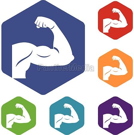 biceps icons set