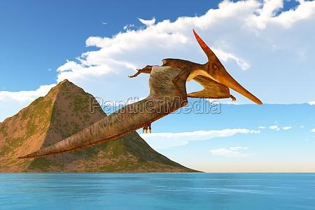 pteranodon afternoon flight