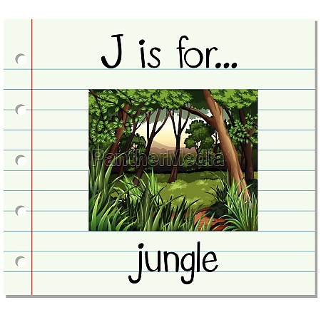 flashcard letter j is for jungle
