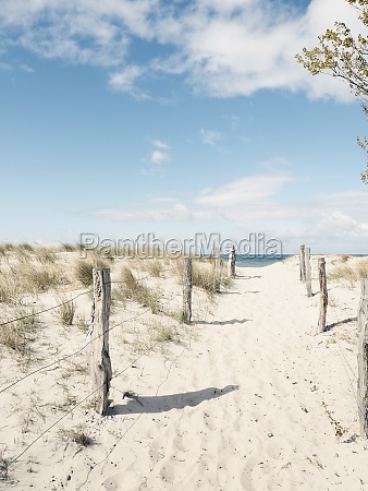 pathway to the beach baltic sea