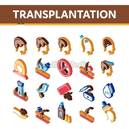 hair transplantation isometric icons set vector
