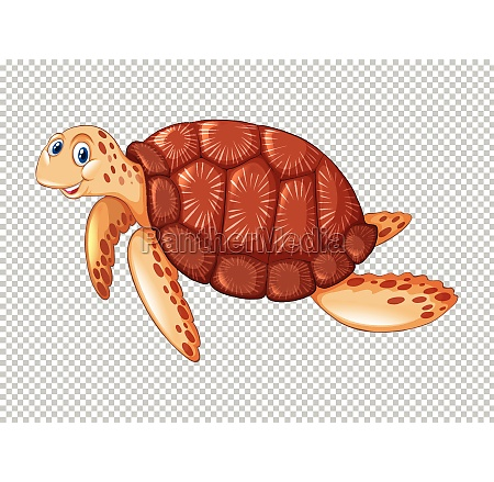 sea turtle swimming on transparent background